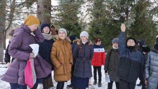 15 января - День зимующих птиц!!!